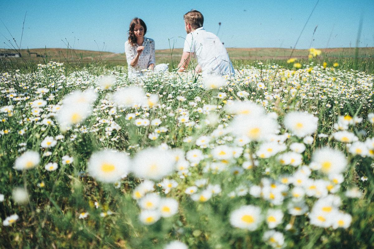 Фото поле ромашки счастье